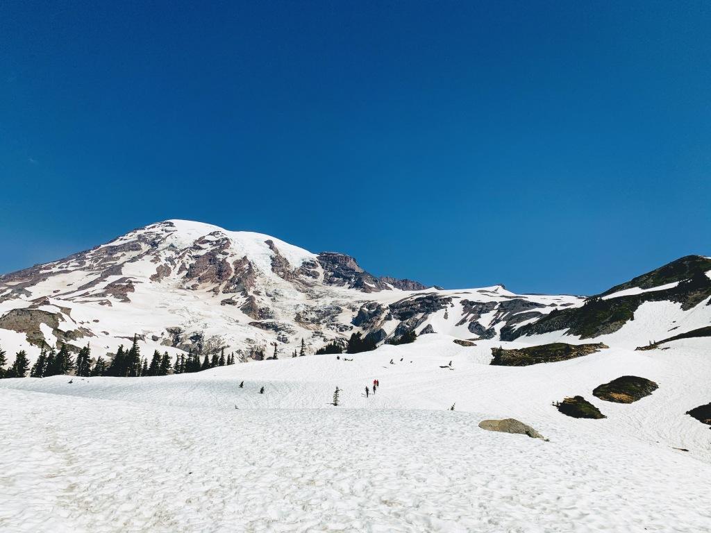 Base of Mt. Rainier